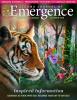 Sedona Journal of Emergence October 2019
